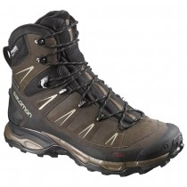 Chaussure Salomon X ULTRA WINTER CS WP pour Homme Marron 372827